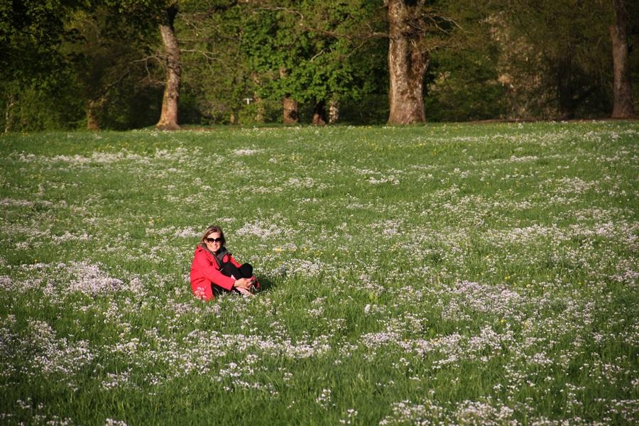 pośród kwiatów w Rosendal