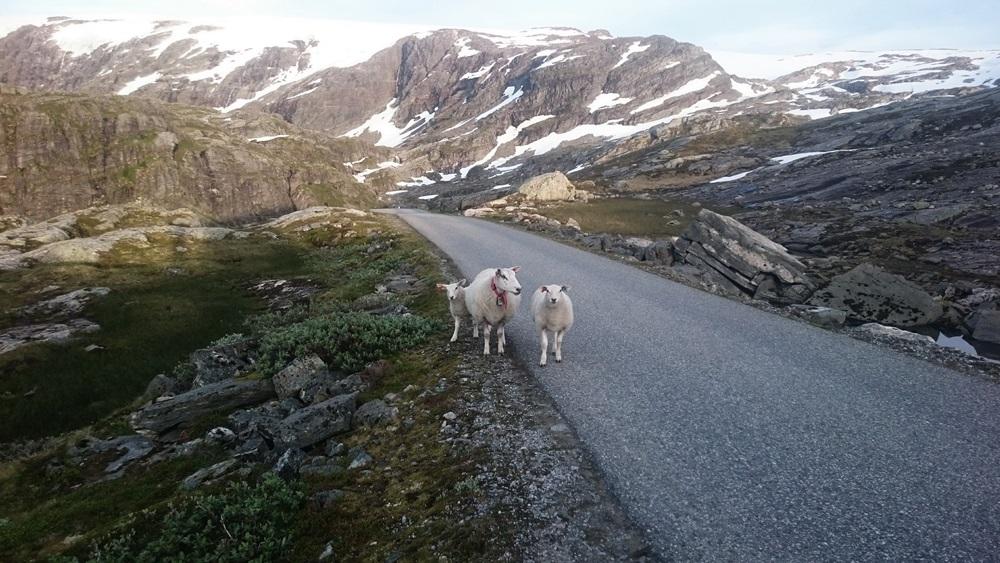 po drodze